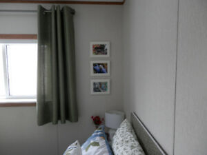 Curtains ( Medium Green ) 2= Panels