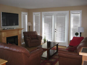 Steady Brook Executive Condo Available for 2 Months- April & May