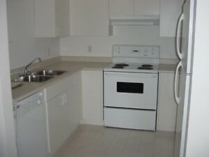 Pet Friendly  - 2 Bdrm Townhouse - 5 Appliances
