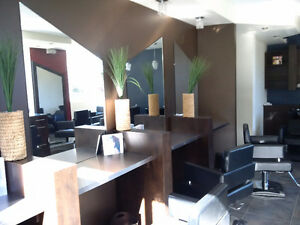 Well furnished high end hair salon Kitchener / Waterloo Kitchener Area image 3