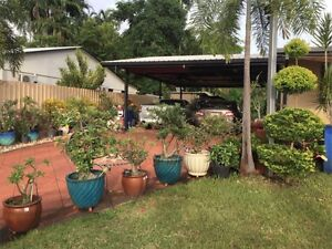 flat for sale Millner Darwin City Preview