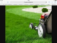 Garden tidy ups and rubbish removals