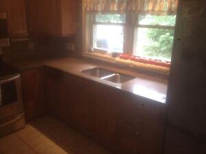 Quality Granite and Quartz $50./ sq ft Stratford Kitchener Area image 5