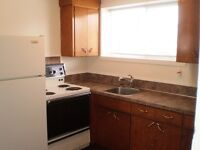 Large Renovated One Bedroom Basement Suite In Meadow Green