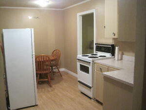GRAND FALLS WINDSOR ONE Bedroom Furnished Apartment