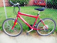 red mountain bike for sale