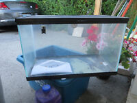 10 gallon glass Terrarium