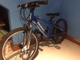 Giant XTC bike
