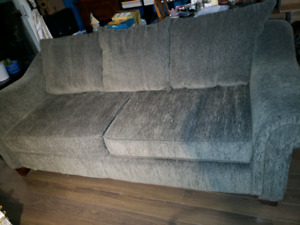 2 year old couch $450