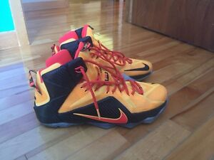 Lebron 12  Shoes (Best offer)
