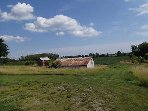 BIG PRICE DROP! 122 + 57 ACRE FARM 4 BDR  HOUSE / BUSINESS Belleville Belleville Area image 3