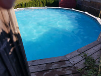 Pool services for half the price.