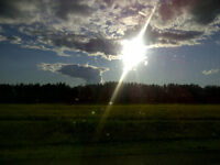 Beautiful Piece of Farmland Close to Edmonton