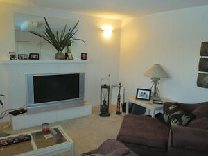 One Bedroom Suite---Furnished---Available March 1st