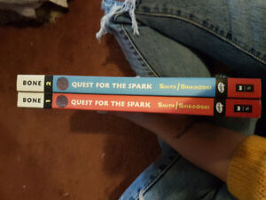 Bone book quest for the spark series first two books