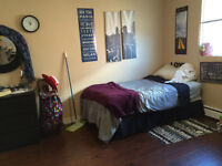 APT for University Students, 8 MTH/1-Year Lease Option-Sept 1