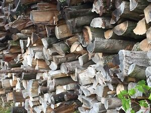 Maple firewood for sale $65 Stratford Kitchener Area image 1