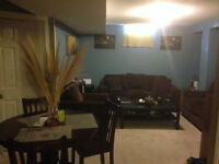 BRAMPTON - 1 BDRM BSMT APT FOR RENT CHINGUACOUSY & SANDALWOOD