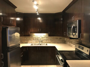 URGENT - Kitchen Cabinets, Bar and Bathroom Vanity for sale