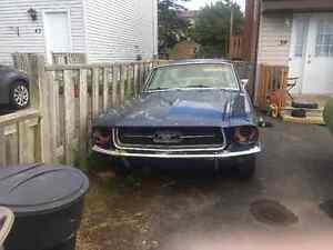 1967 mustang coupe 289