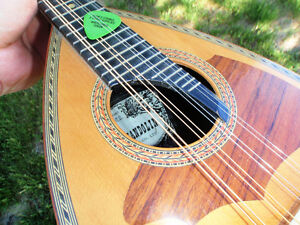 REDUCED! Mandolin-- Deep Body type