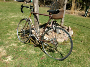 Vintage nishiki bicycle with owners manual