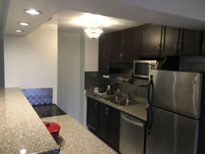 Stunning 1 Bedroom Condo for Rent w/ In-suite Laundry
