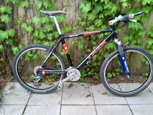 "Trek 19"" (size large) mtn bike"