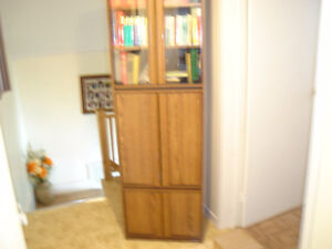 cabinet or bookcases
