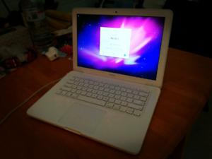 MacBook (13-inch, Mid 2010) working