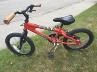 Kids Norco bicycle