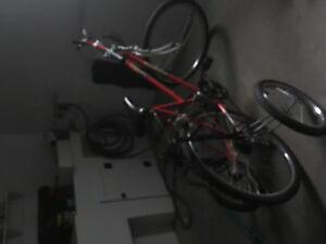 vélo avec trois roues arrières