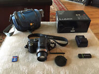 Panasonic Lumix DMC-FZ35 12.1 MP Digital Camera