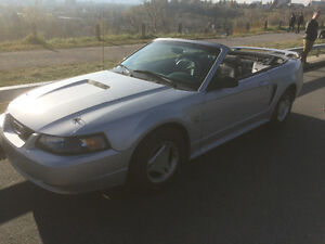 1999 Ford Mustang Convertible with Leather