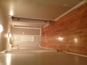 3 Bedroom above ground basement apartment