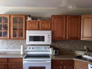 House for rent in pictou nova Scotia