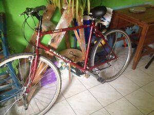 Vélo grand cadre