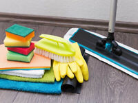 House Cleaner Needed?