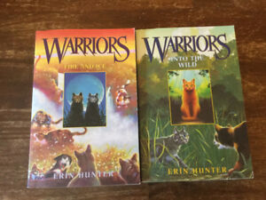 Warriors series of books for youth