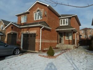Beautiful and spacious house in the most desired location of Vau