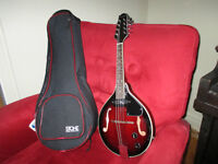 New Savannah Electric Mandolin with soft case