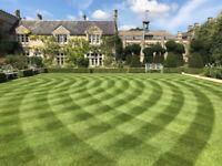 Alim's Lawn Service