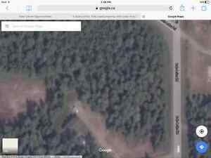 5 Acres of flat, fully treed land only 1 min from the Hwy!!