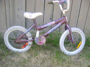 Mountain  bicycle for girls