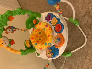 Great condition Fisher Price Jumperoo