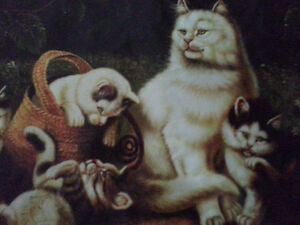 Cats printed on canvas