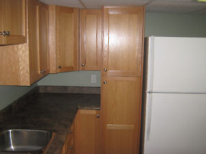 For rent a 2 bedroom basement apartment in Botwood