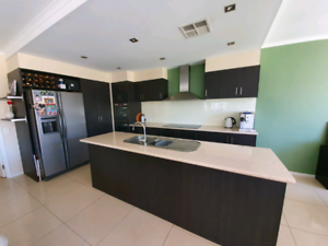 Modern Kitchen with some appliances