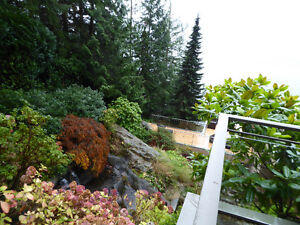 Magnificent Property On the Water on 3 levels with cottage /deck North Shore Greater Vancouver Area image 9