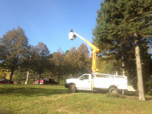 Tree and Shrub Trimming and Removal, Bucket truck rental